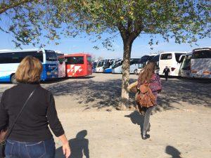 montserrat-tour-buses